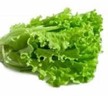 Billede til varegruppe Salat